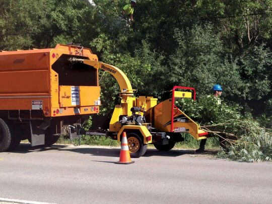 Commercial Tree Services-Frostproof FL Tree Trimming and Stump Grinding Services-We Offer Tree Trimming Services, Tree Removal, Tree Pruning, Tree Cutting, Residential and Commercial Tree Trimming Services, Storm Damage, Emergency Tree Removal, Land Clearing, Tree Companies, Tree Care Service, Stump Grinding, and we're the Best Tree Trimming Company Near You Guaranteed!
