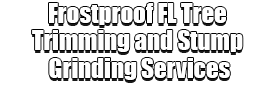 Frostproof FL Tree Trimming and Stump Grinding Services Logo-We Offer Tree Trimming Services, Tree Removal, Tree Pruning, Tree Cutting, Residential and Commercial Tree Trimming Services, Storm Damage, Emergency Tree Removal, Land Clearing, Tree Companies, Tree Care Service, Stump Grinding, and we're the Best Tree Trimming Company Near You Guaranteed!